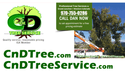 C & D Tree Service: professional tree services -  tree cutting, tree trimming, stump removal, mulching in Grand Junction & Western Colorado.